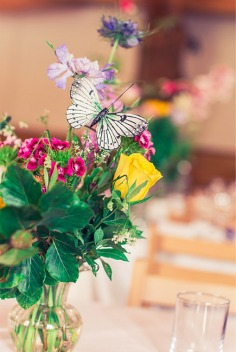 colour-of-magic-venue_dressing-03