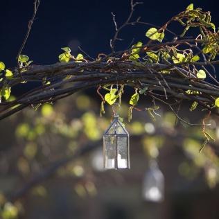 erdigris-hazel-arches-lanterns